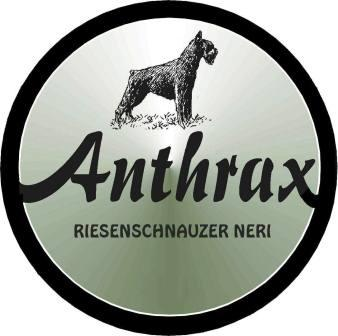 Anthrax_tras2